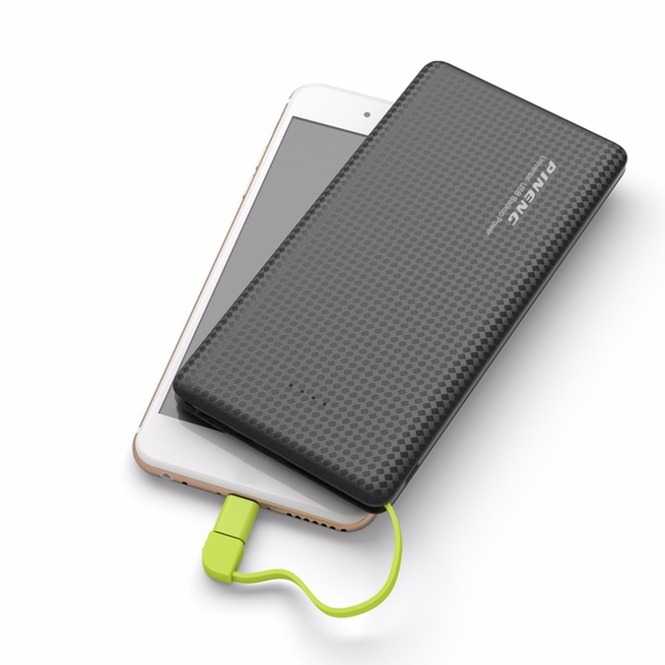 Powerbank Pinneng 952 5000 mAh